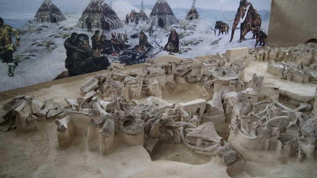 В этом году начнется реконструкция брянского музея охотников на мамонтов