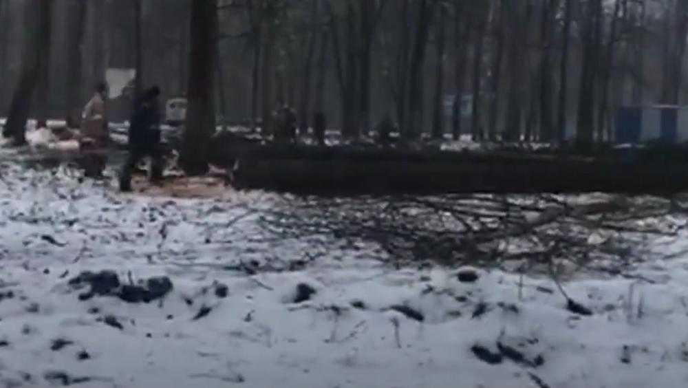 Валуев попросил прокурора проверить в Клинцах вырубку паркового леса