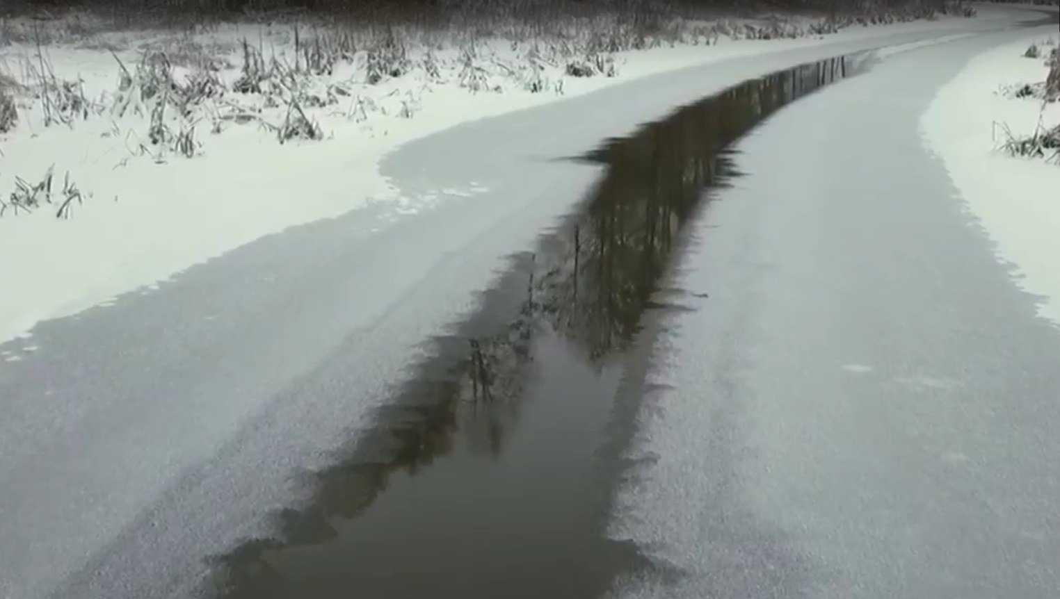 Брянский губернатор Богомаз пригрозил закрытием Стародубскому сырзаводу