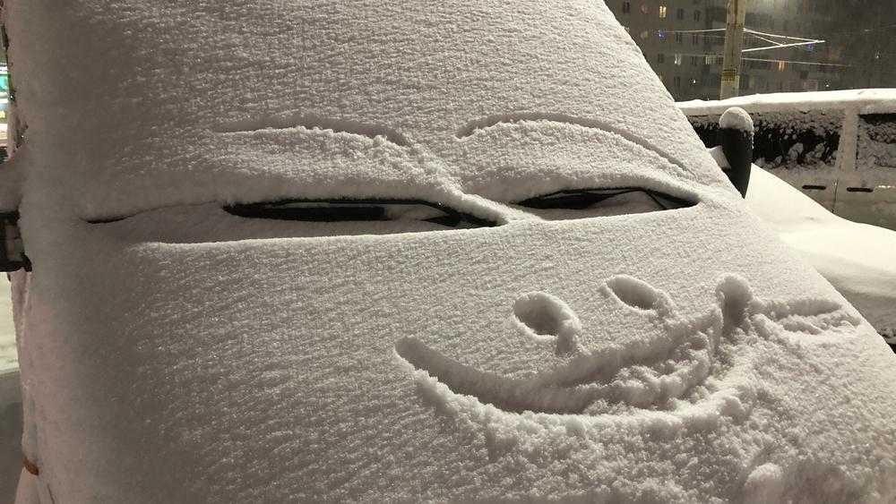 Брянскую область засыпало снегом