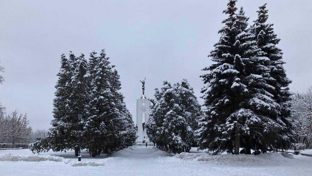 В воскресенье ночью в Брянске ожидаются морозы до 22 градусов