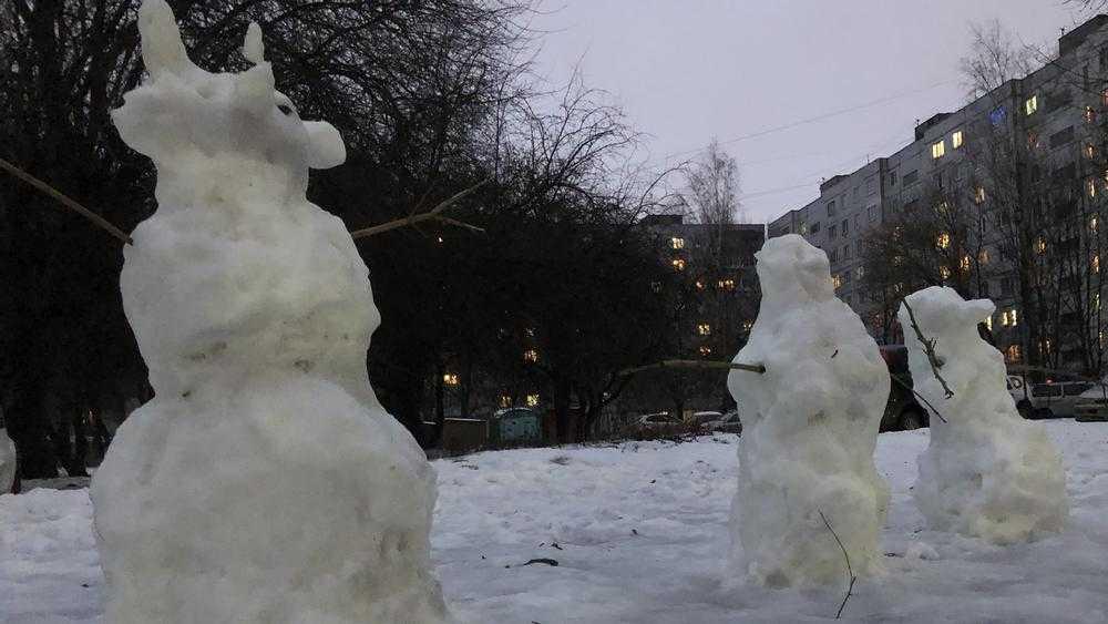В Брянской области резко потеплеет