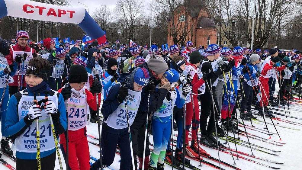 В Брянске на «Лыжне России» наградили родителей лыжника Большунова