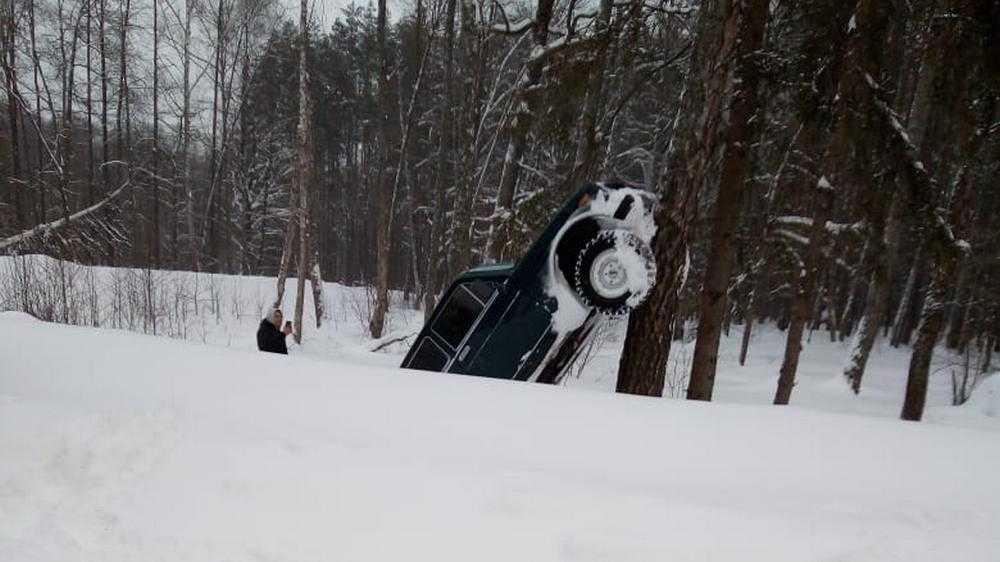 Под Брянском слетевший с дороги автомобиль по-кошачьи залез на дерево