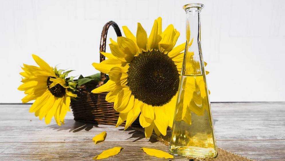 Брянцы смогут покупать подсолнечное масло по фиксированной цене до конца марта
