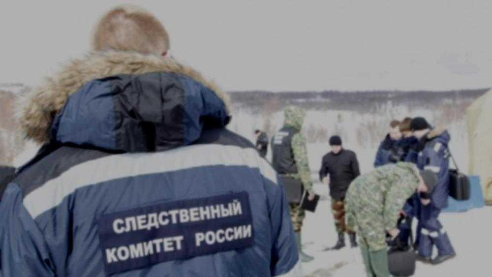 В Брянске после проседания крыши ледовый дворец «Пересвет» переделают