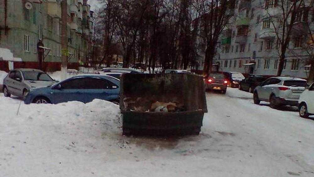В Брянске после жалоб горожан вывезли мусор с Дятьковской улицы
