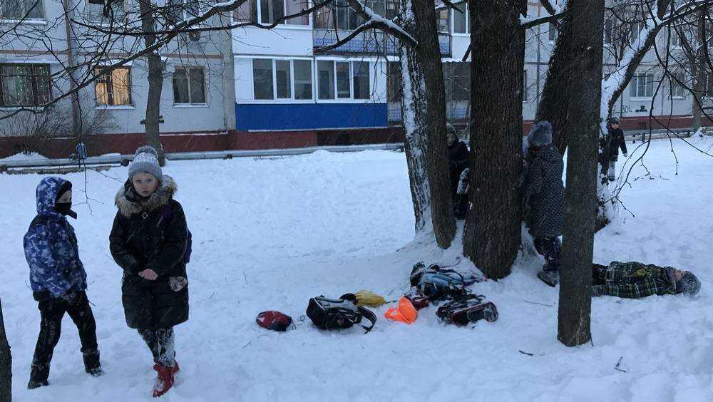 В Брянской области 19 февраля похолодает до 31 градуса мороза