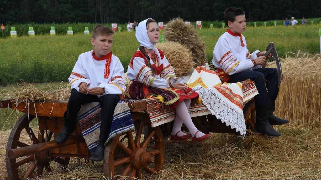 Со 2 августа брянские семьи получат на детей «путинские» 10 тысяч рублей