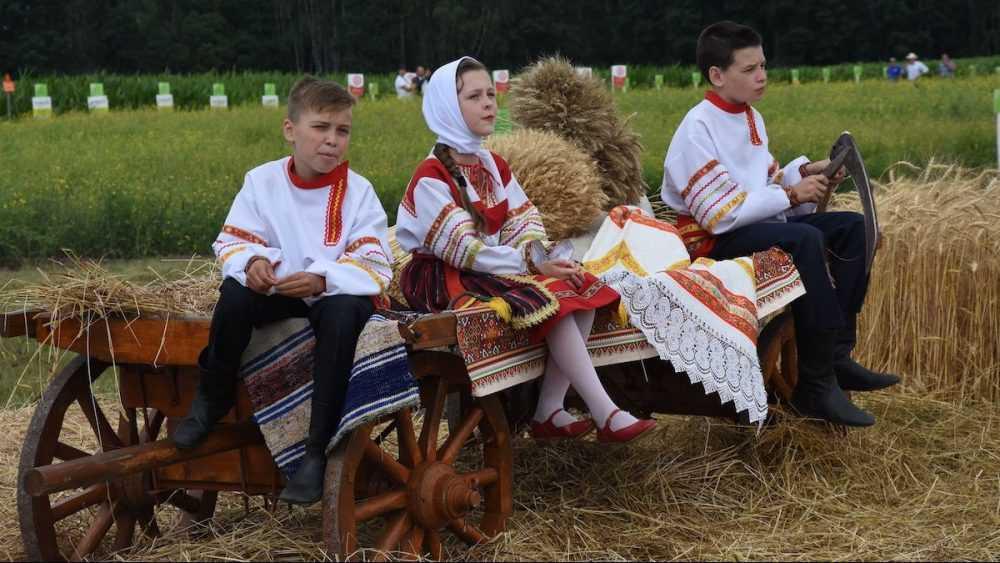 Сегодня брянские семьи получат на детей «путинские» 10 тысяч рублей