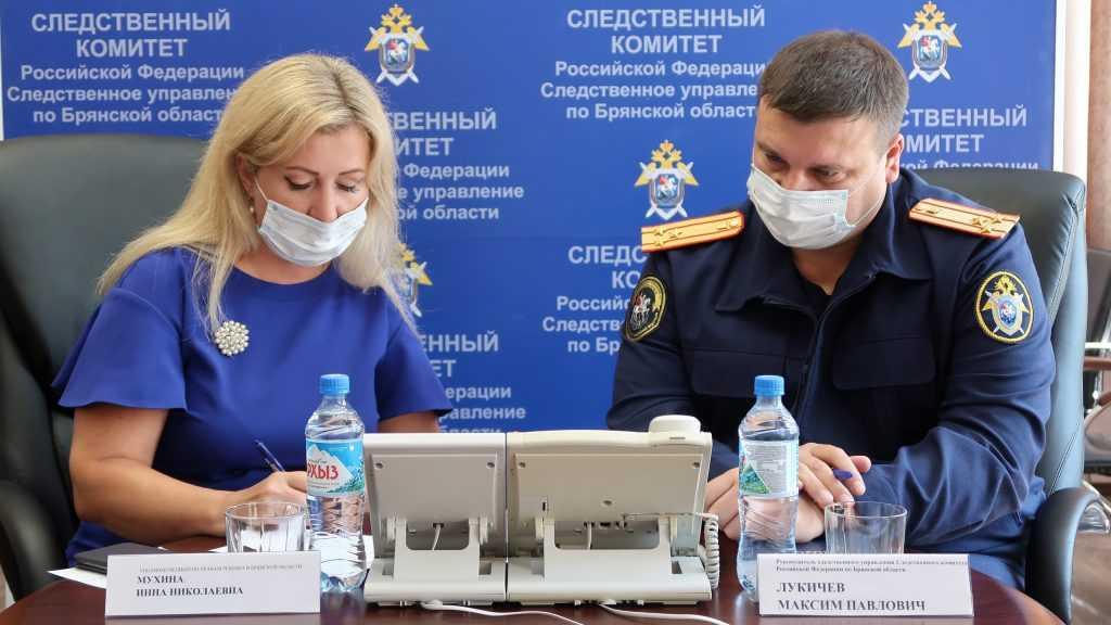 Следователь Лукичев и защитница детей Мухина выслушают брянцев 17 февраля