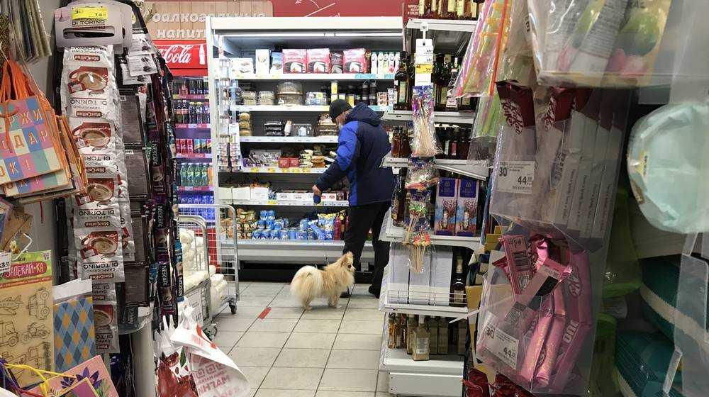 Жители Брянска стали выгуливать собак в магазине «Магнит»