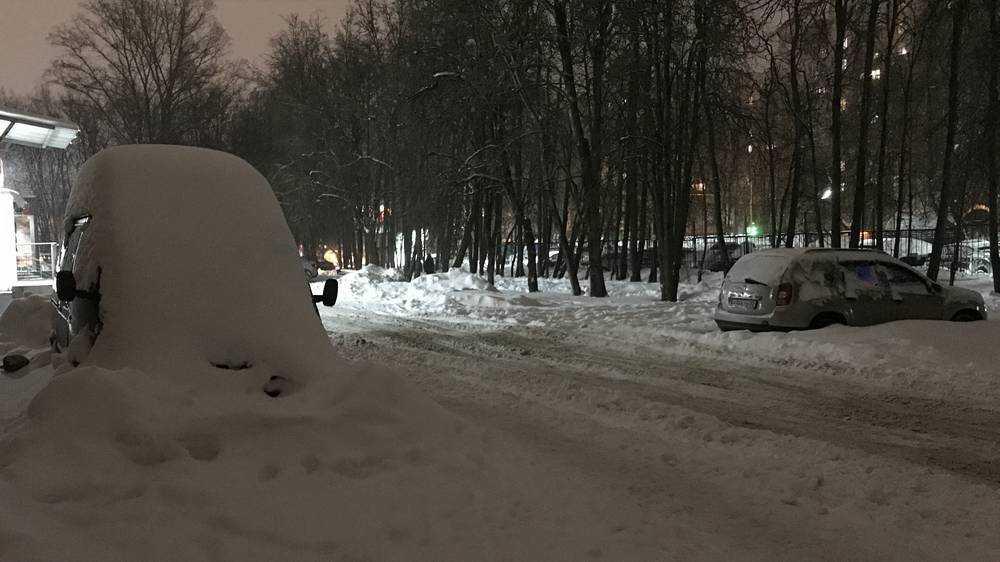 В Брянске после снегопада появились забавные изваяния