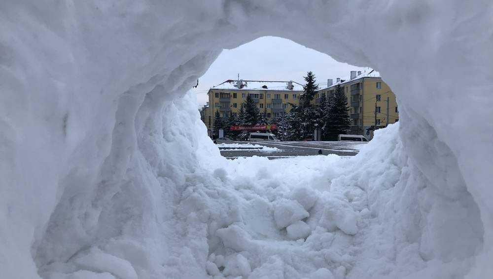 В Брянской области ожидаются 20-градусный мороз и метели