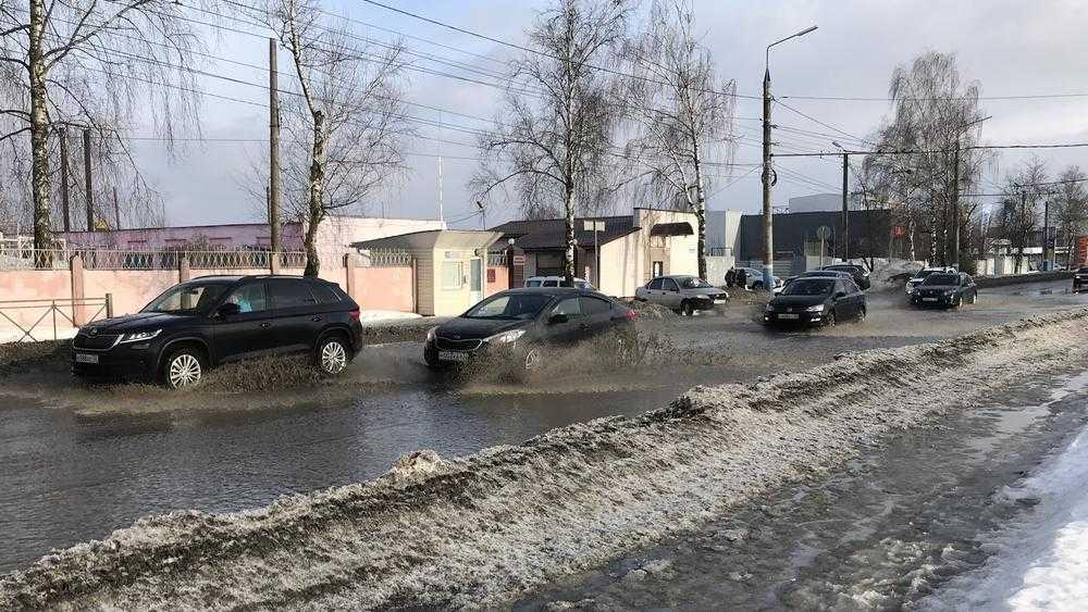 В Брянске пешеходы выплеснули гнев на ошалевших от весны водителей