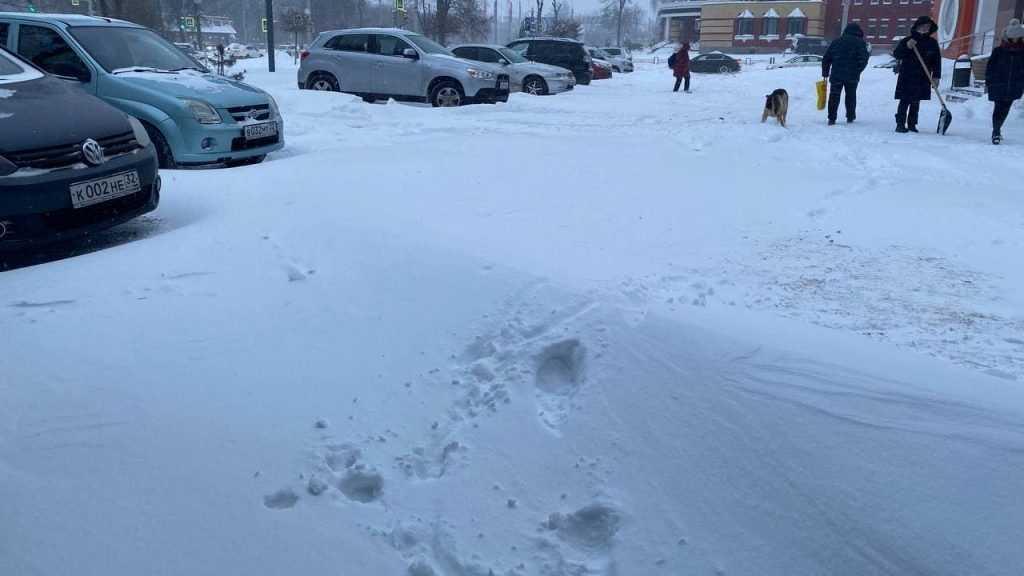 Мощный снегопад парализовал движение в Брянске