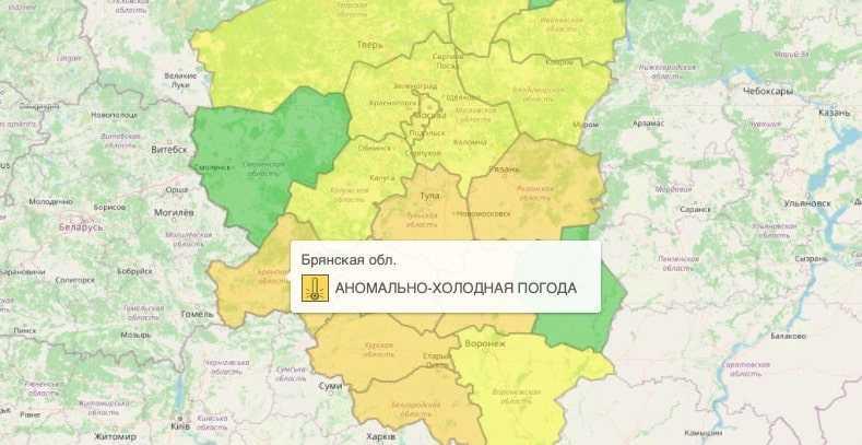 В Брянске установлен «оранжевый» уровень опасности из-за аномальной погоды