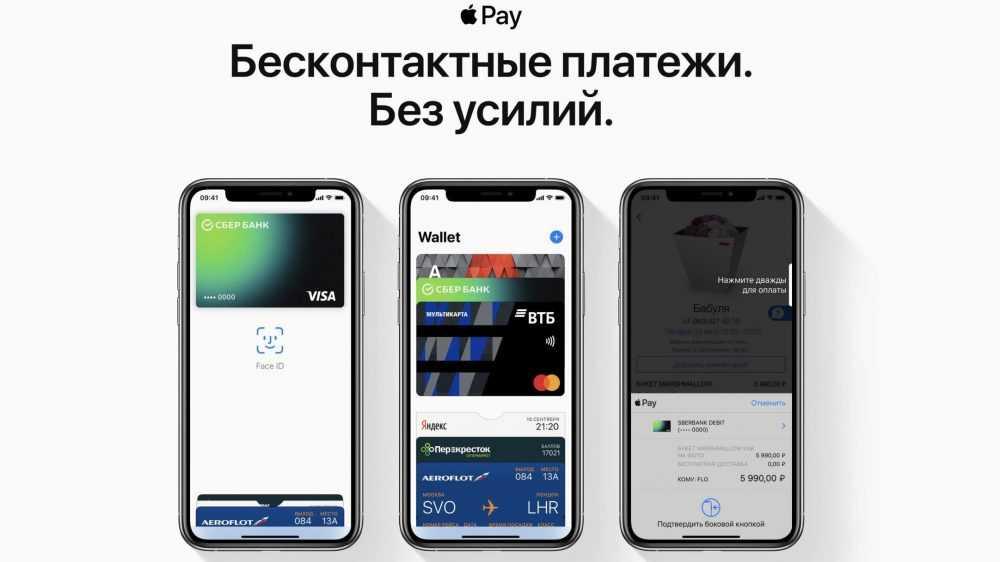 Брянские бюджетники смогут пользоваться Apple Pay