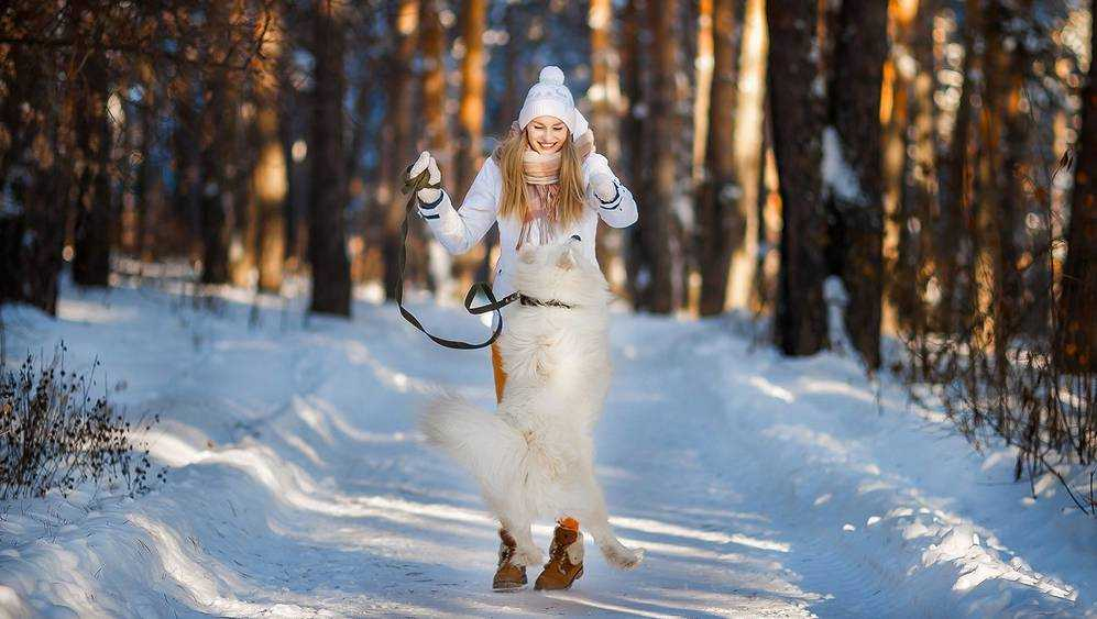 На Брянщине 14-градусный мороз сменится 2-градусным теплом