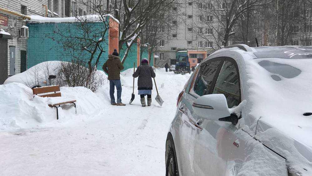 Жители Брянска взялись за лопаты и вышли на расчистку дворов от снега
