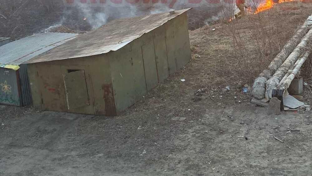 В Брянске загадочные вредители подожгли траву в микрорайоне «Отрадное»