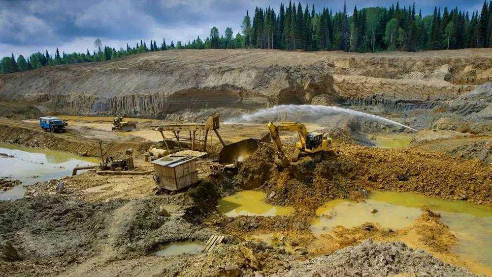 «Зеленых» уличили в лоббировании интересов западных компаний
