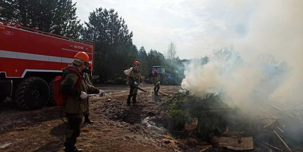 Брянские лесники показали видео учений по тушению лесных пожаров