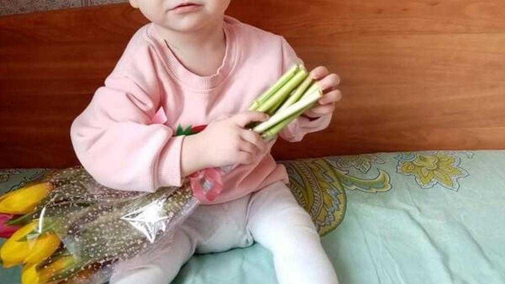 В Брянской области за сутки собрали 350 тысяч на операцию годовалой девочке