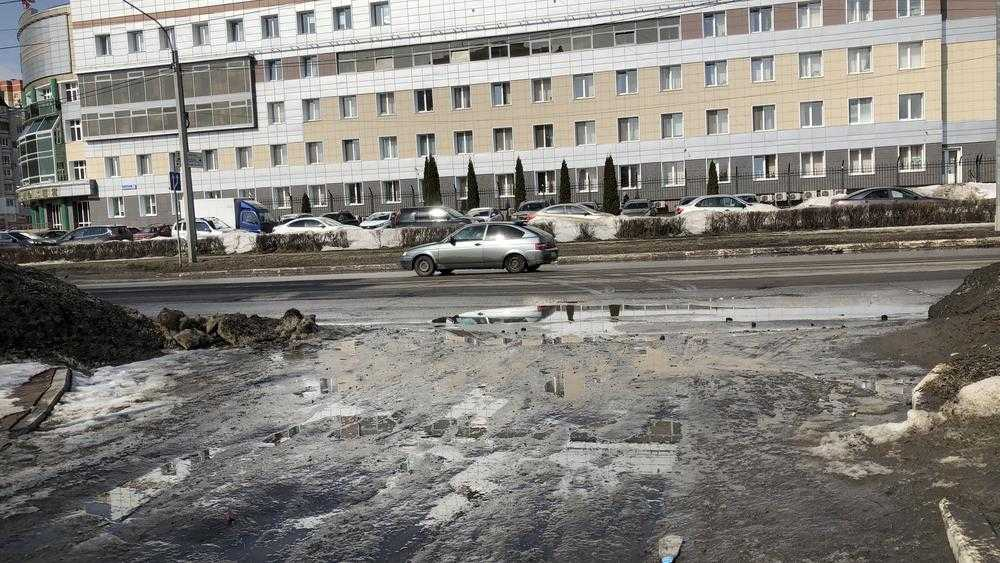 На фоне роскошных чиновничьих домов гостей Брянска ужаснул весенний свинарник