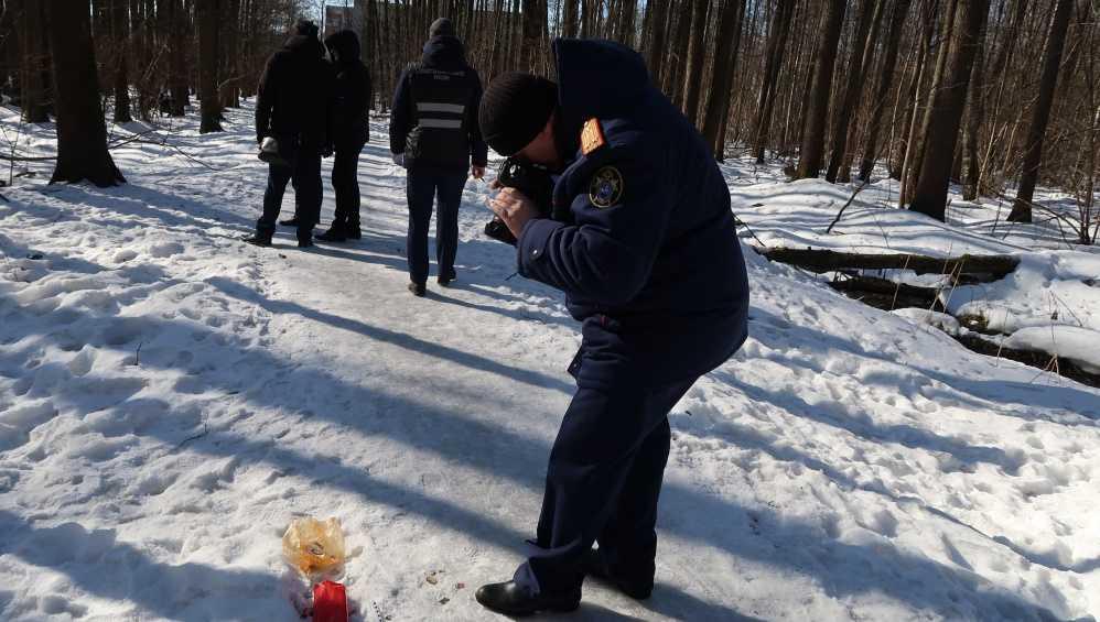 СК рассказал о расследовании убийства найденного в лесу обгоревшего младенца