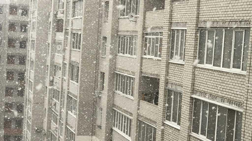 В Брянске пошел крупный снег