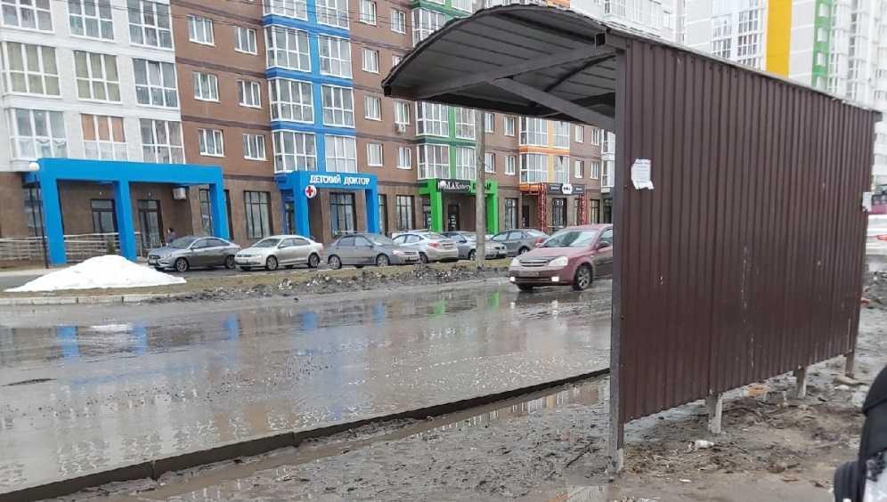 В Брянске женщина с ребенком упала в лужу на остановке на улице Горбатова