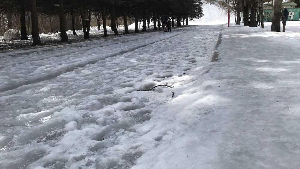 В Брянске парк «Соловьи» стал опасным из-за ледяных бугров