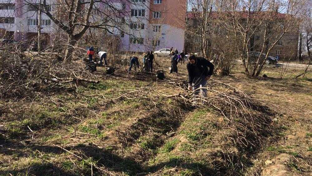 В Брянске со 2 апреля начнется месячник благоустройства