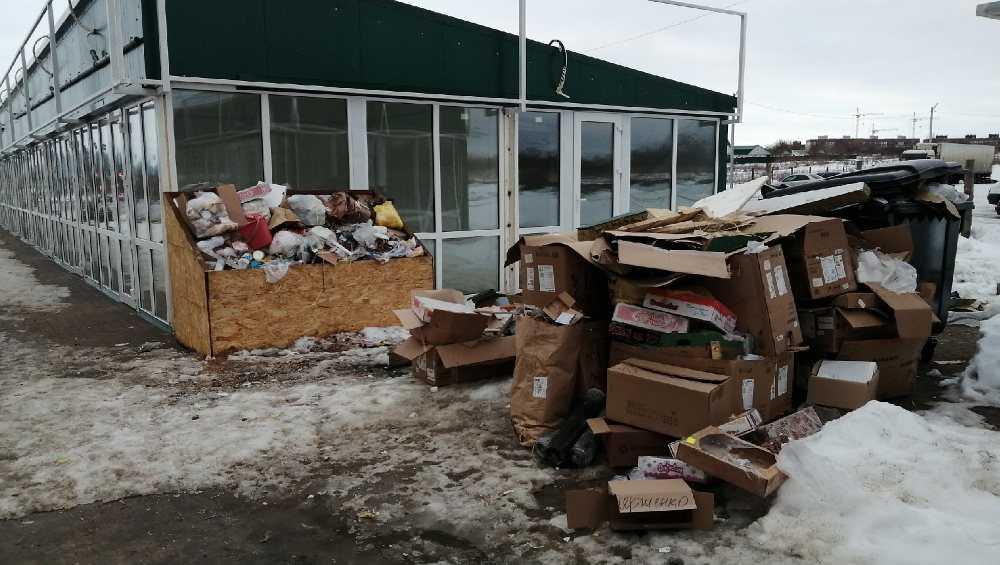 Жителей Брянска возмутила свалка с крысами на улице Романа Брянского