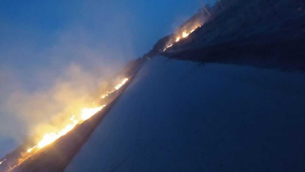 В Фокино Брянской области ночью загорелась сухая трава на поле