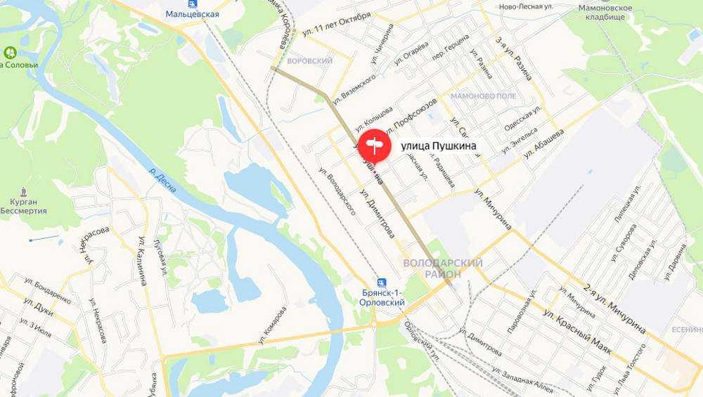 В Брянске на улице Пушкина построят более километра ливневки