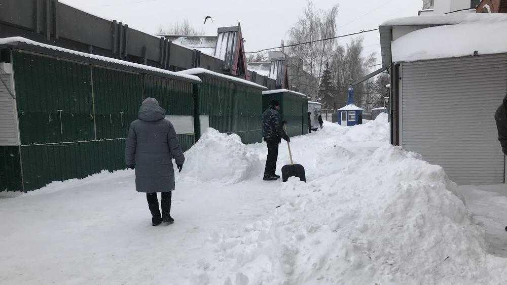 В Брянской области 12 марта обещают метель и гололед