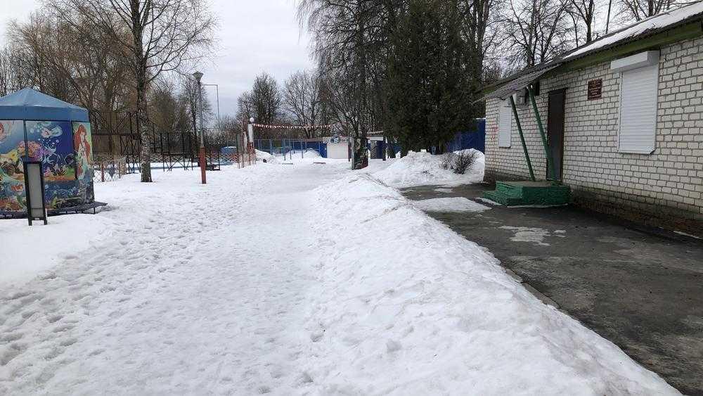 В Брянске руководители парка «Соловьи» почистили снег лишь около себя