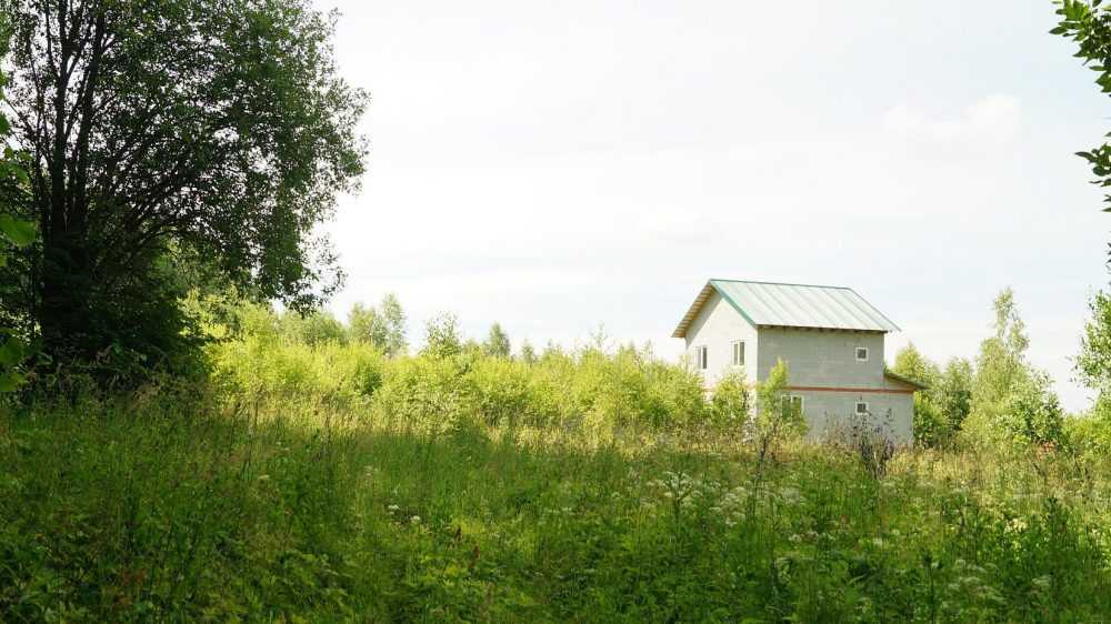 Дачи в Брянской области резко подорожали