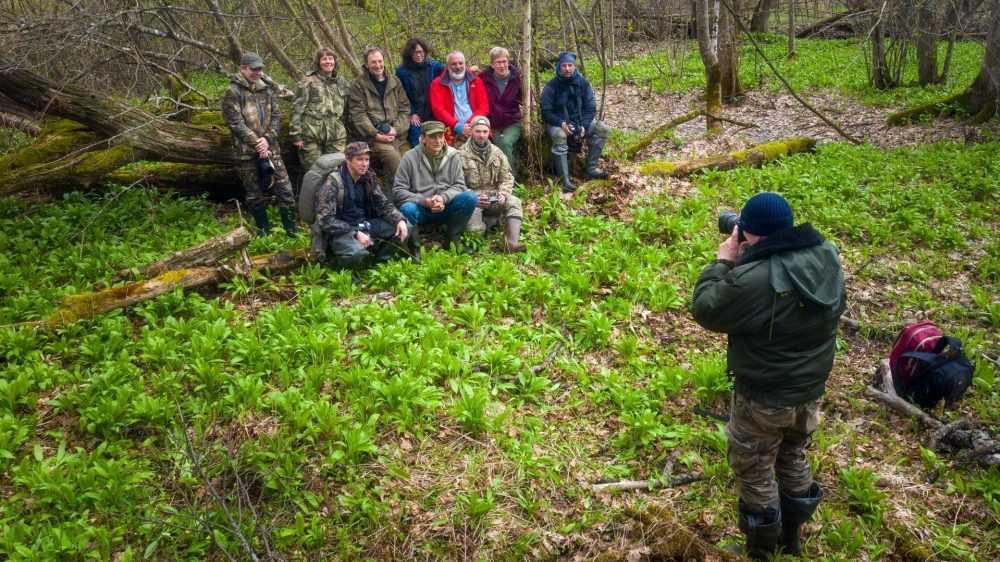 Фотографы поделились впечатлениями от брянского леса