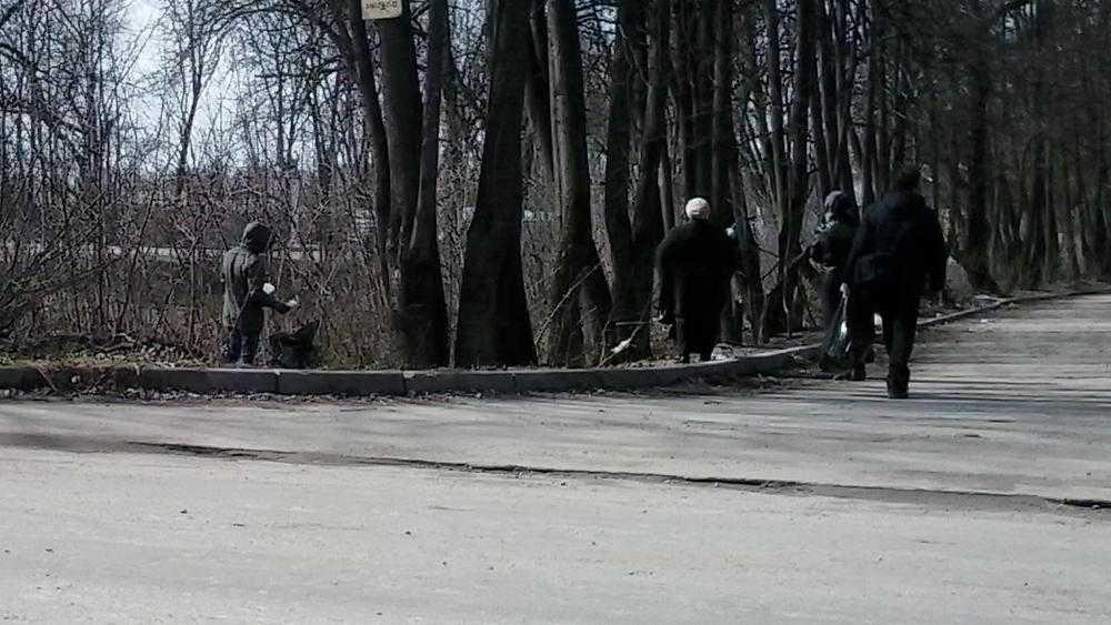 В брянском поселке Отрадное полицию попросили объяснить тайну кровавого следа