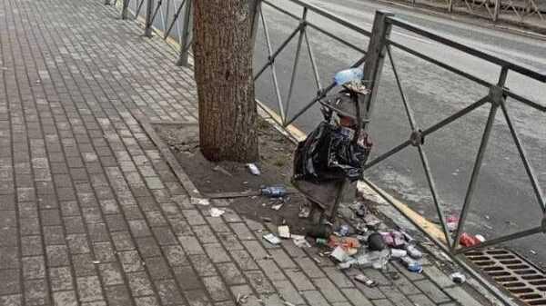 Жители Брянска возмутились грязью и мусором в центре города