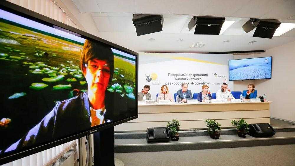 В «Роснефти» рассказали о важной программе сохранения биоразнообразия
