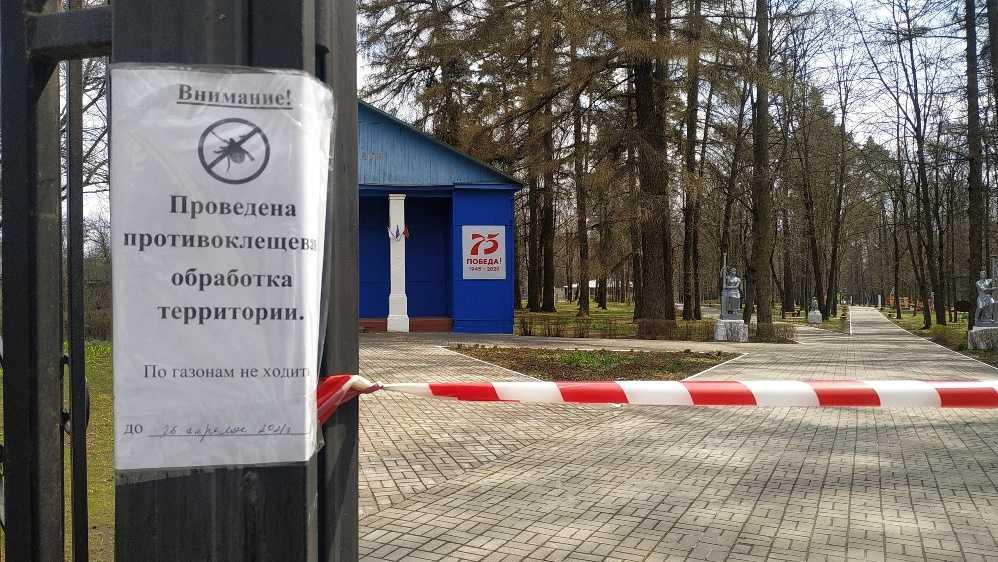 В Локте Брянской области парк защитили от клещей