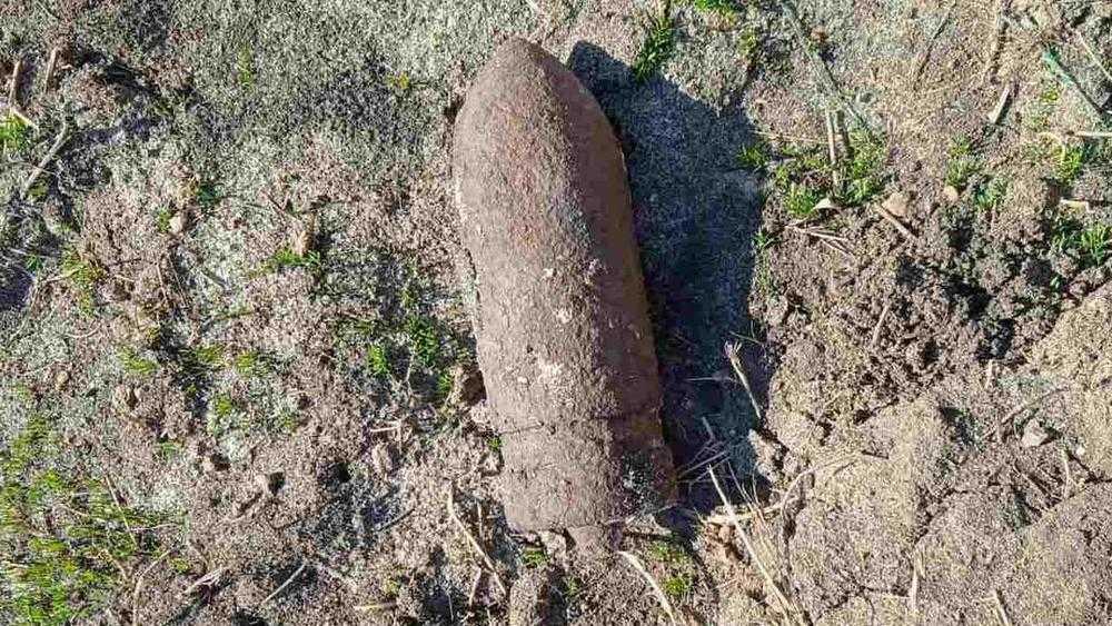 В двух районах Брянской области обнаружили 2 мины и 2 снаряда