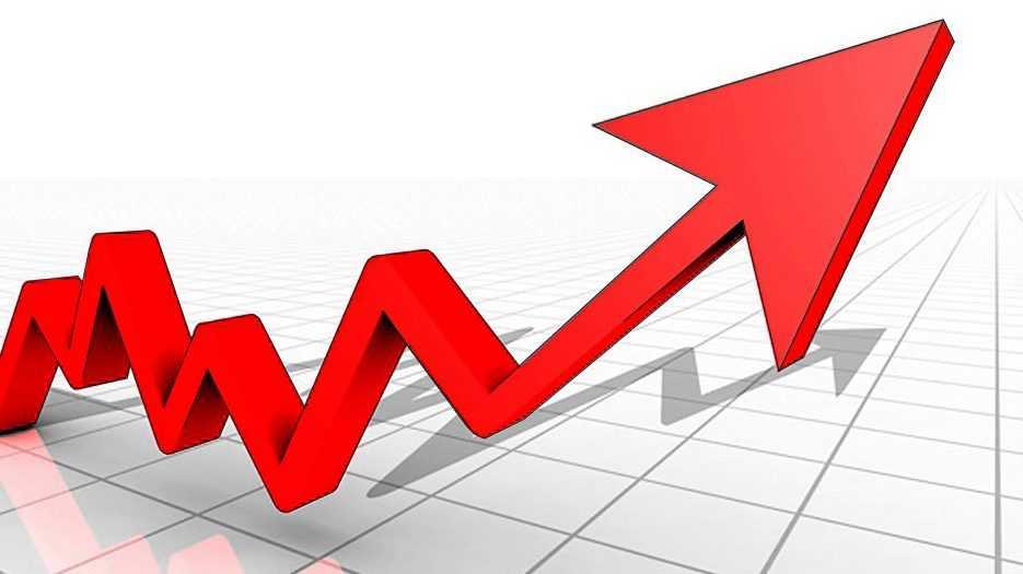 В восстановление брянской экономики поверили индивидуальные предприниматели