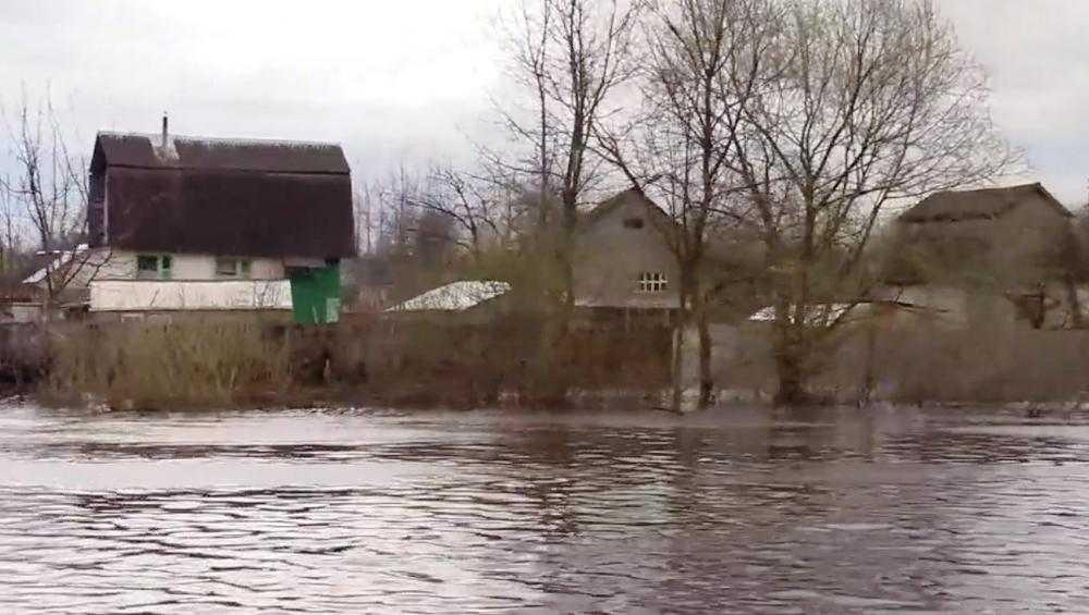 Половина затопленных участков в Брянске освободилась от воды