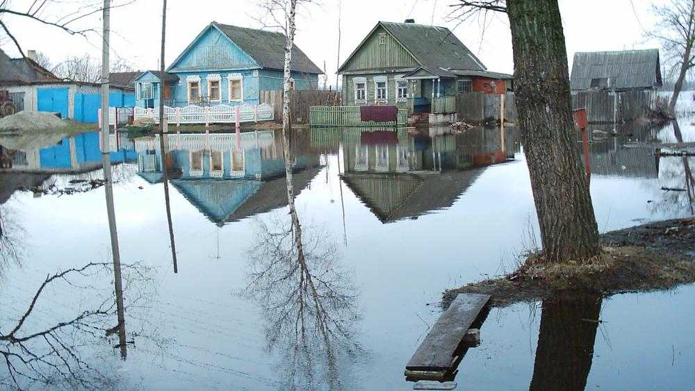 Бывшего брянского спасателя разочаровал прогноз последствий паводка