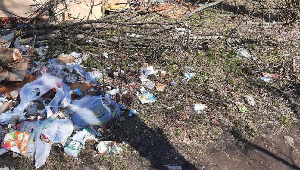 Жители Брянска пожаловались на свалку в центре города